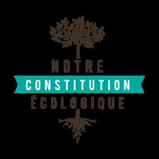 Vignette Constit Eco
